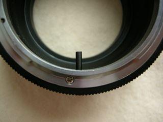 DSCN3052_R.JPG