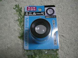 DSCN4576_R.JPG